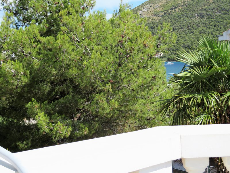 Apartments 3 palme, holiday rental in Grebastica