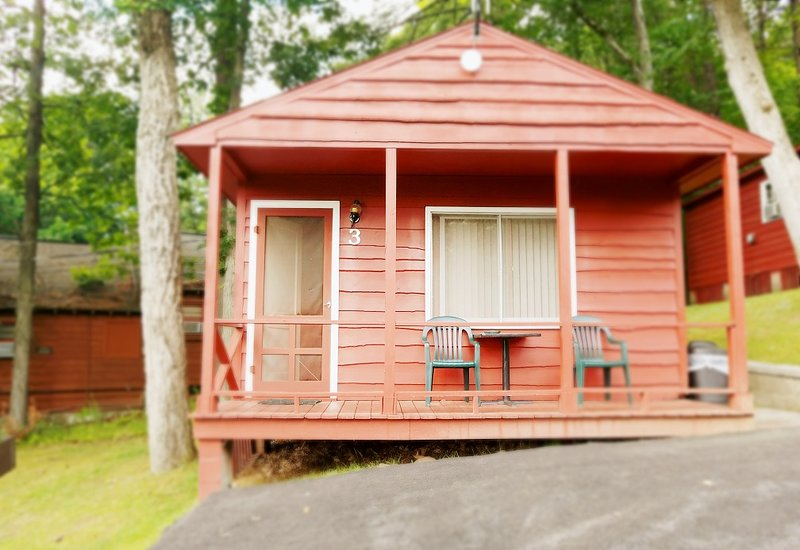 The Gold Eagle - Cottage 3, holiday rental in Lake George