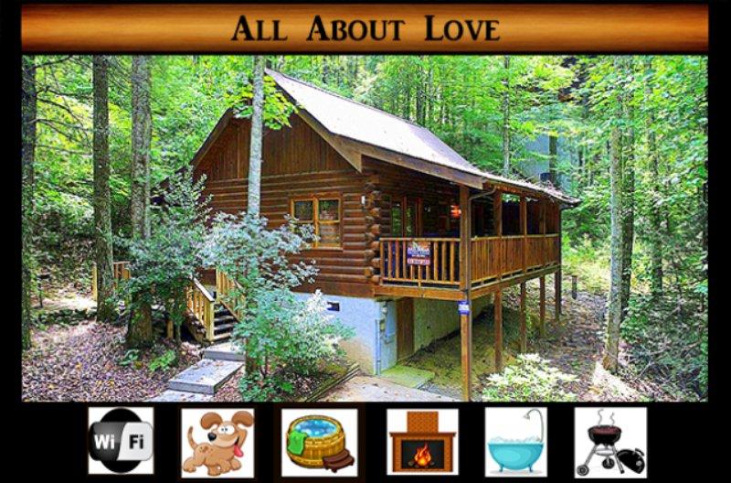 Costruzione, casa, cabina, casetta, cottage
