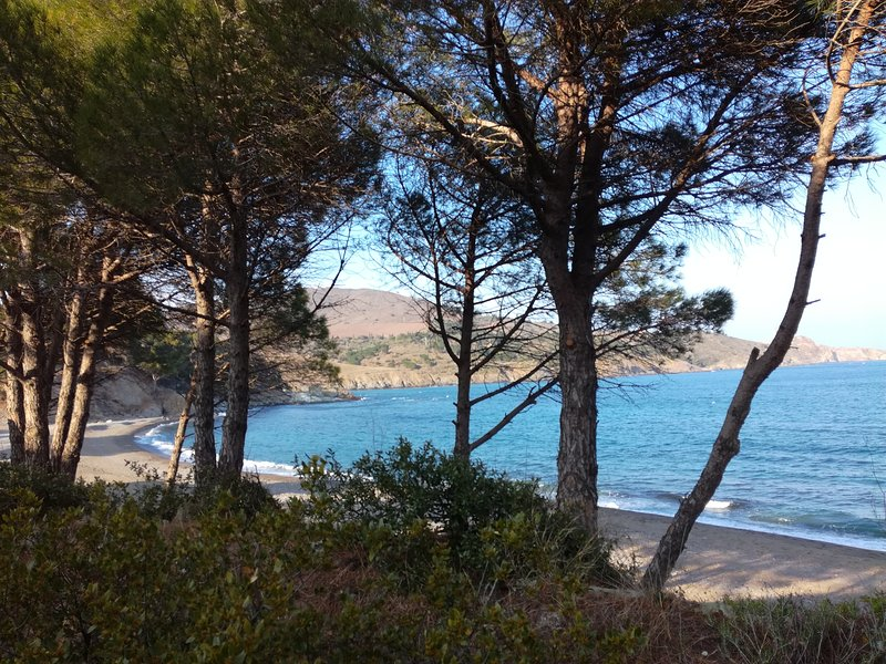 The Anse tropical Paulilles, near Banyuls sur mer, 40 minutes Unmissable !!