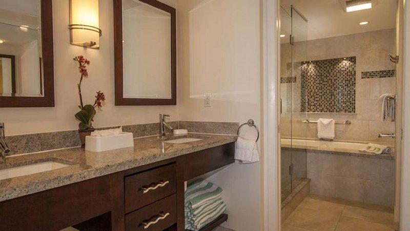 Master bathroom: jacuzzi, marble tiling, double vanity