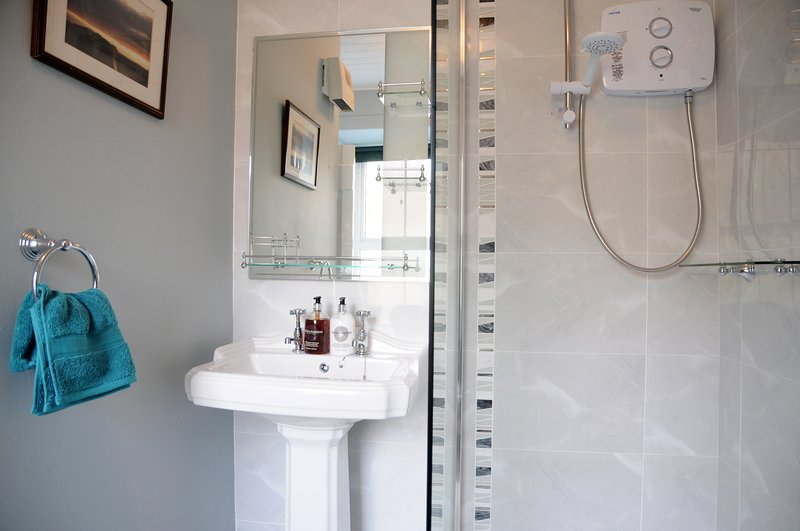 Newly renovated Shower/Toilet