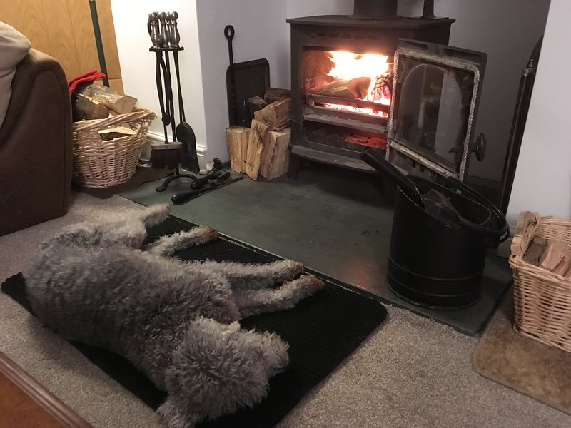 Cosy Log Burner in the lounge