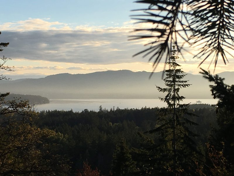 View from top of Horth Hill provincial park.  5 minutes from our house.  The ocean is 15 minute walk