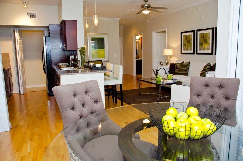 Luxury Medical Center NRG Rice University Apartment UPDATED 2018 ...