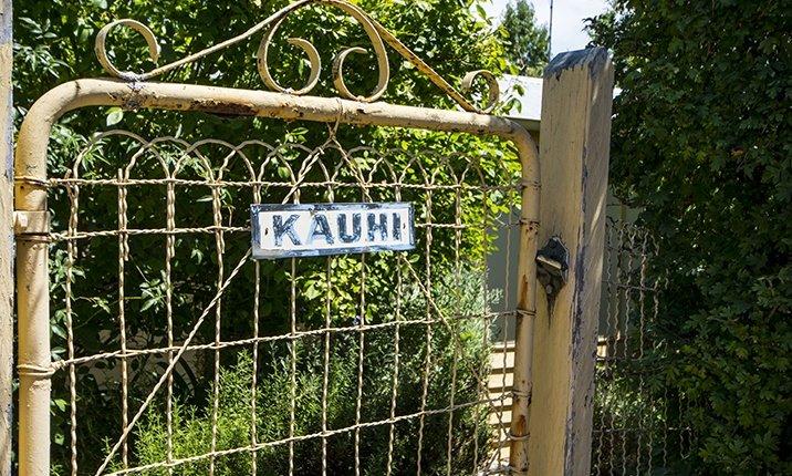 Kauhi - Daylesford Escapes