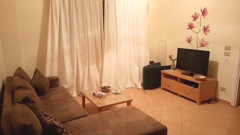 Sofa & Satellite TV