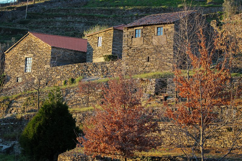 CARDENHA DO DOURO, holiday rental in Vila Real District