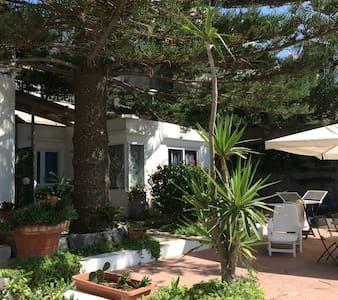 La Tartaruga, accogliente monolocale sul mare, vacation rental in Forio
