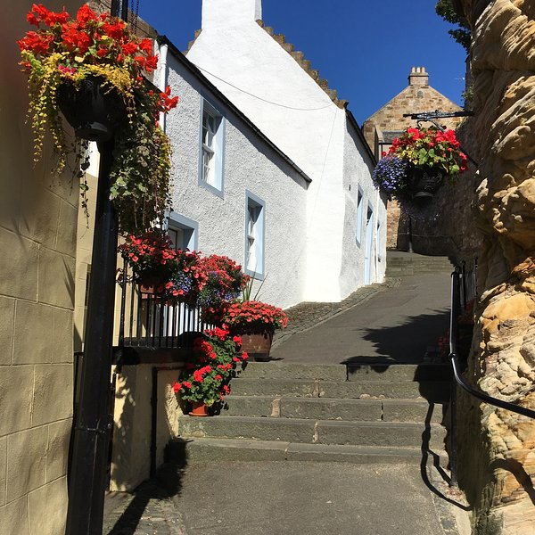 A delightful and historic property just a few steps from the harbour., vacation rental in Pittenweem