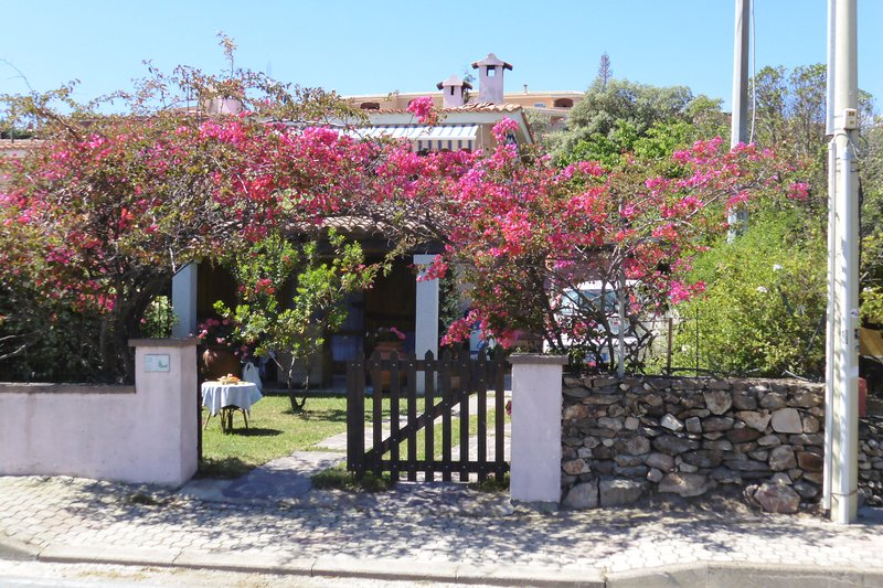 Apartment with garden, 500 mt from the center., vacation rental in San Teodoro