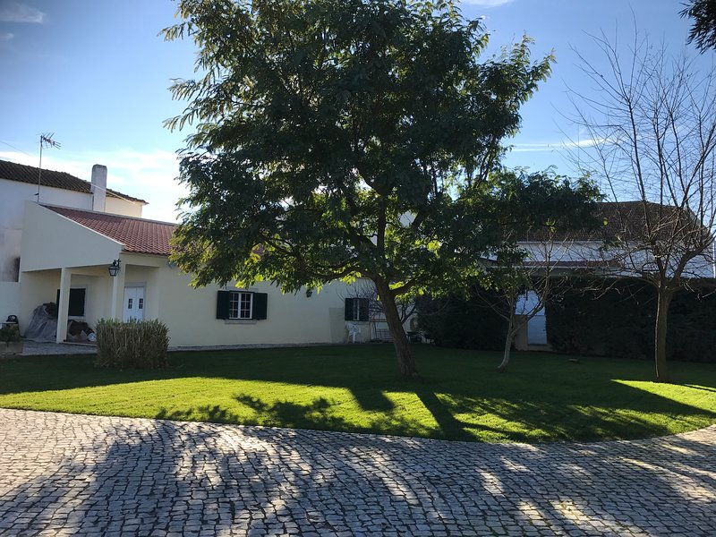 Nice house with shared pool & Wifi, Ferienwohnung in Golega