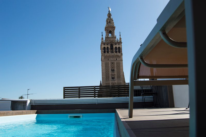 Perfect roof top with swimming pool and nice views of the Cathedral