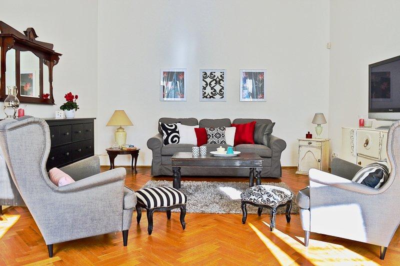 Belle lumineuse, spacieuse salle de séjour avec canapé-lit.