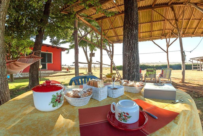 Casa Vacanze da Peppino - Appartamento 7 posti letto, vacation rental in Latina Scalo