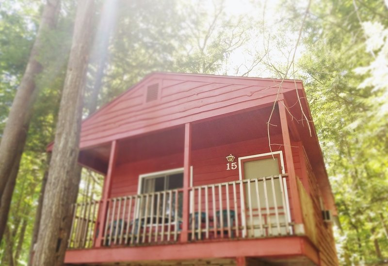 The Gold Eagle - Cottage 15, holiday rental in Lake George