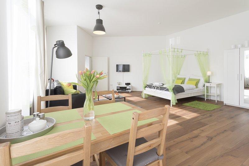 Studio Apartment for 4, WiFi, 45qm, casa vacanza a Schonefeld
