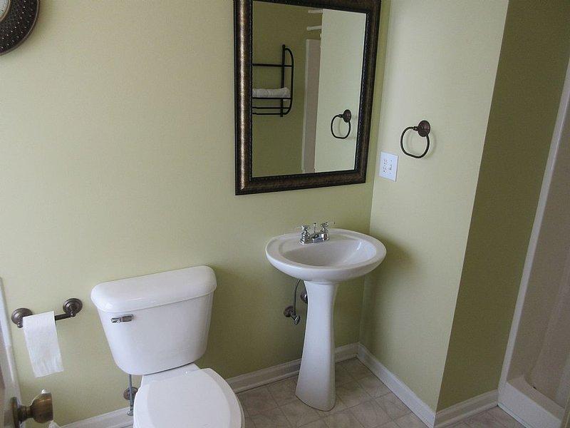 bathroom 1 - shower and tub