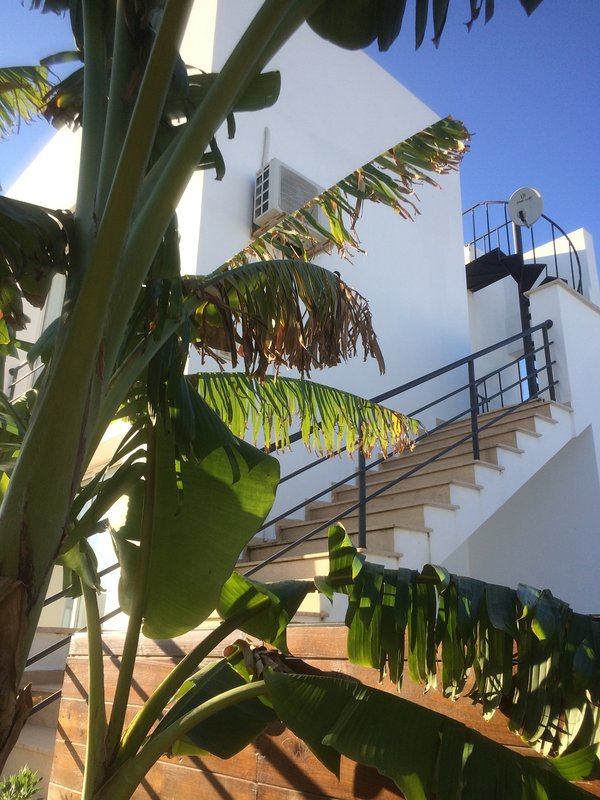 Private steps to apartment and roof terrace