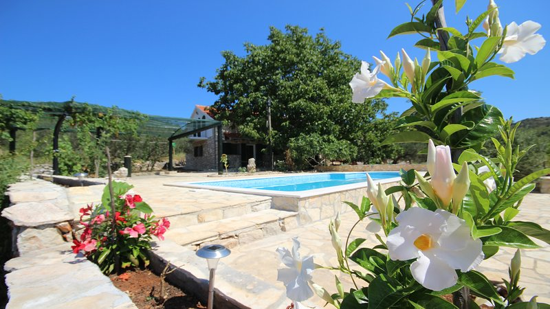 exterior, piscina
