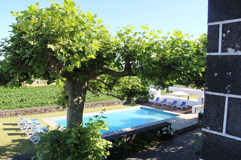 Casa do Pico Arde - Appartement Blue - vue sur la piscine