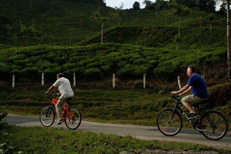 Entre las actividades que se ofrecen es el ciclismo, el senderismo, el yoga y la meditación, artes marciales y la pintura!