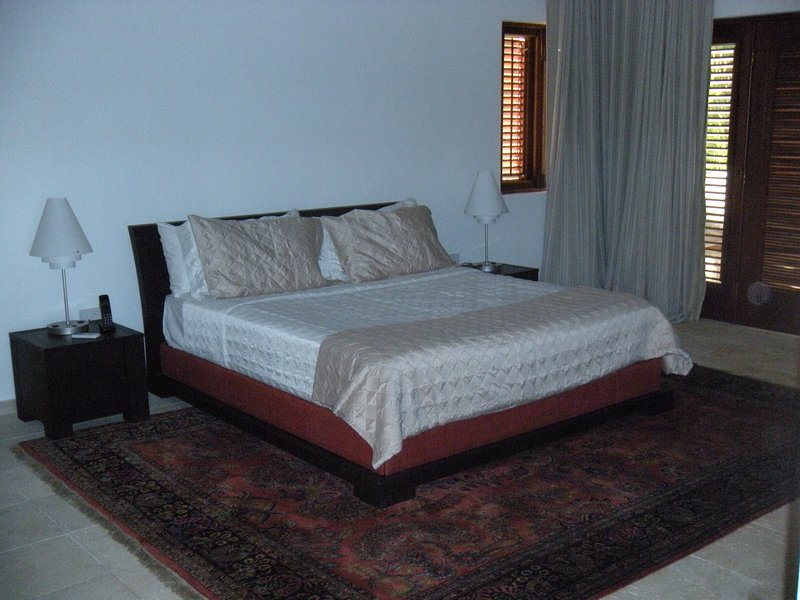 Downstairs master with King bed and en suite bathroom
