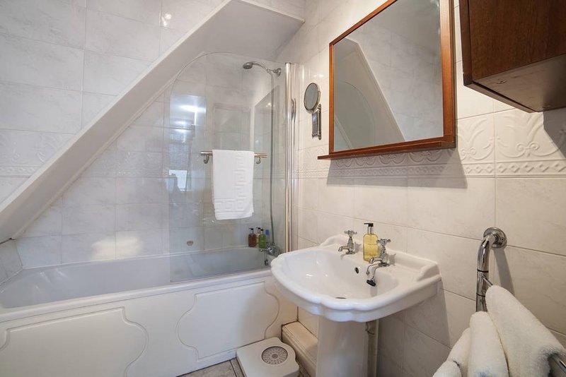 baño escaleras abajo con ducha en el baño.