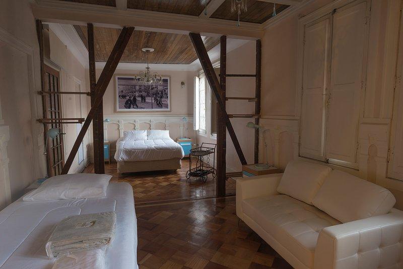 Downey-Mozó: Ignacio Domeyko Heritage Apartment, holiday rental in Lo Solar