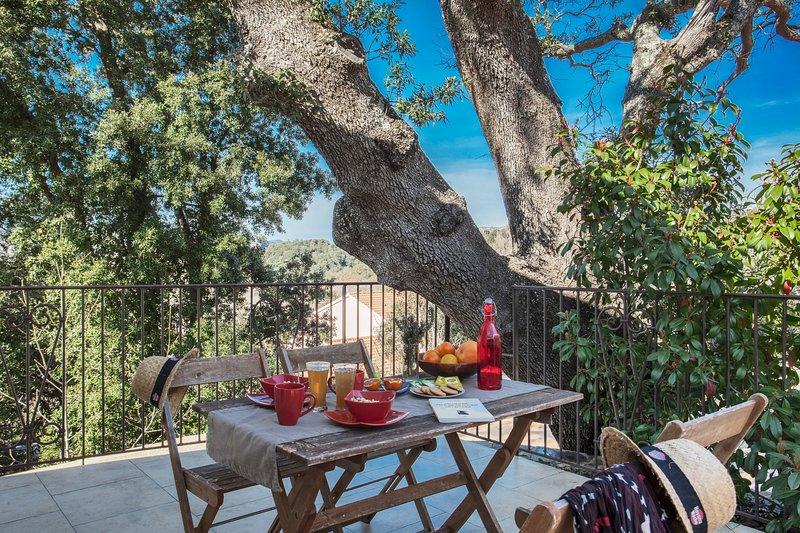 Domaine Ghjulia - Casa Castagniccia, location de vacances à Barbaggio