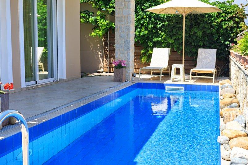 Nopigeia Villa Sleeps 7 with Pool and Air Con - 5229689, holiday rental in Koleni