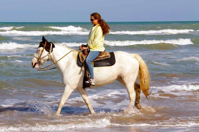 ¡Disfruta de la playa a caballo!
