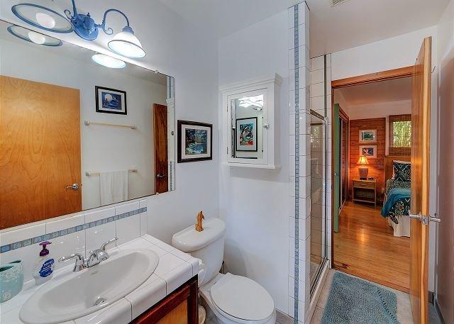 Camera da letto degli ospiti al piano inferiore e bagno