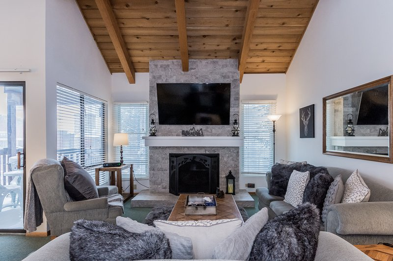 Living Room, Gas Fireplace, Queen Sleeper Sofa Couch, Flat Screen TV,  Cable