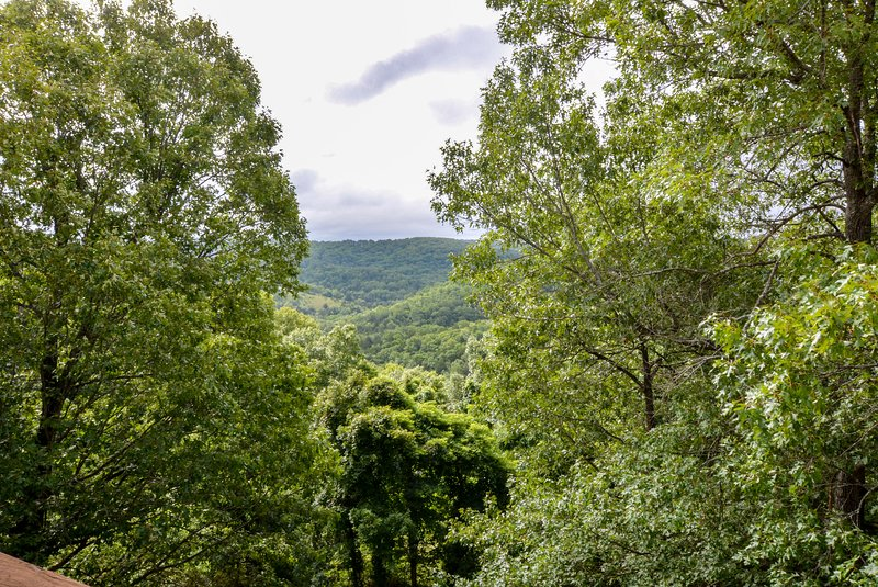 Look at that million-dollar view of the Ozark Mountains!