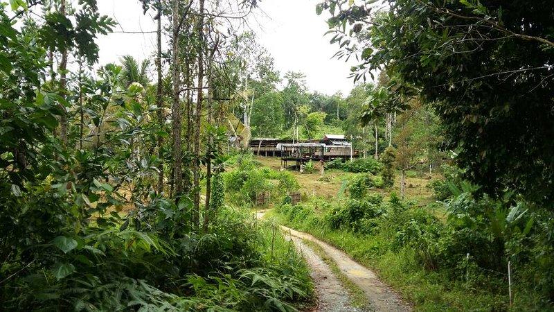 BAMBOO GUESTHOUSE - drmind farm, alquiler vacacional en Kuala Klawang