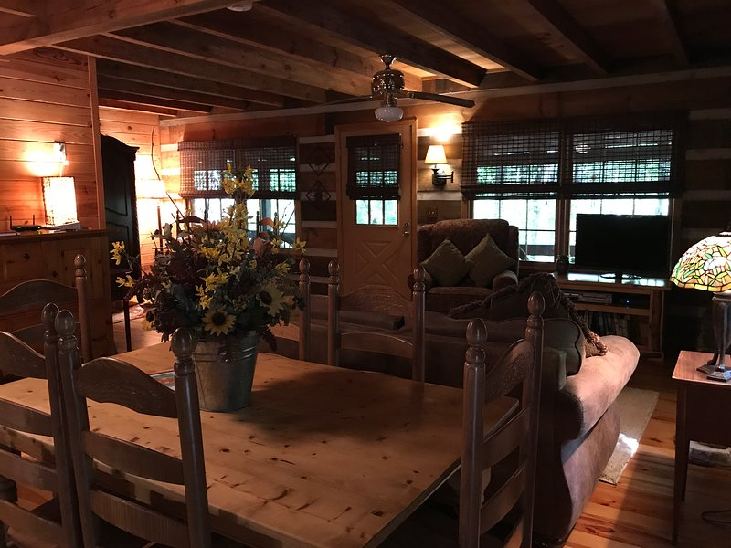 Beautiful Real Log Cabin. Hot tub. Wifi. Fire pit., location de vacances à Blue Ridge