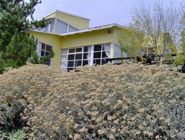 Casa luminosa Tunquén, holiday rental in Las Cruces