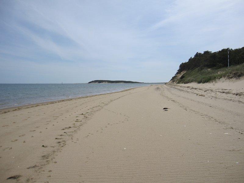 Along Mayo Beach