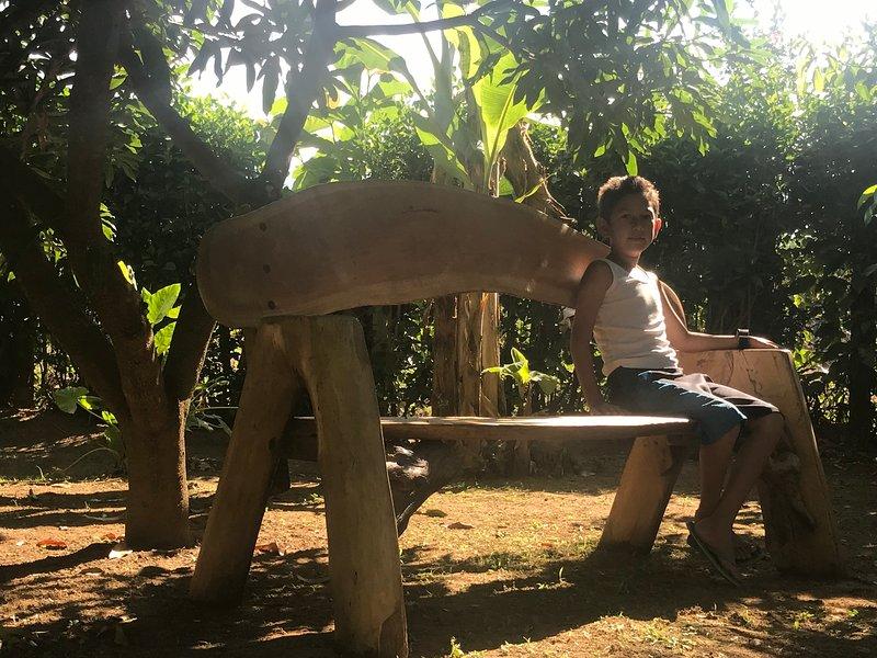 bench in shade in the garden