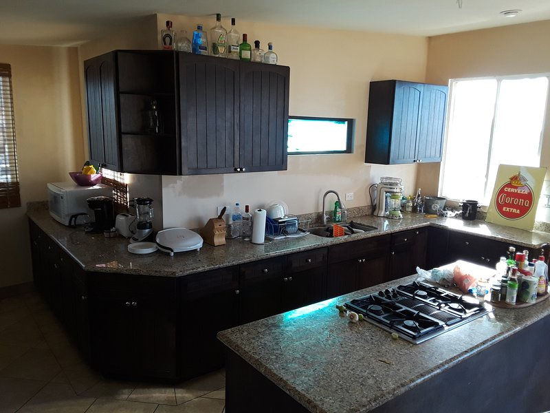 Kitchen and Window for passing food thru while BBQing, Wet Bar on deck outside window