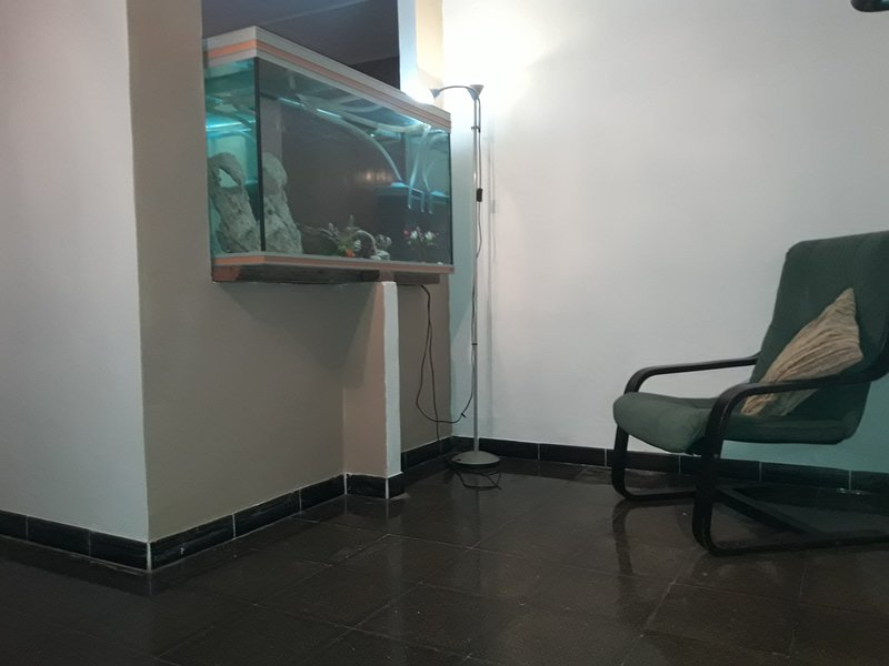 Apartment entrance and reading corner in front of the aquarium.