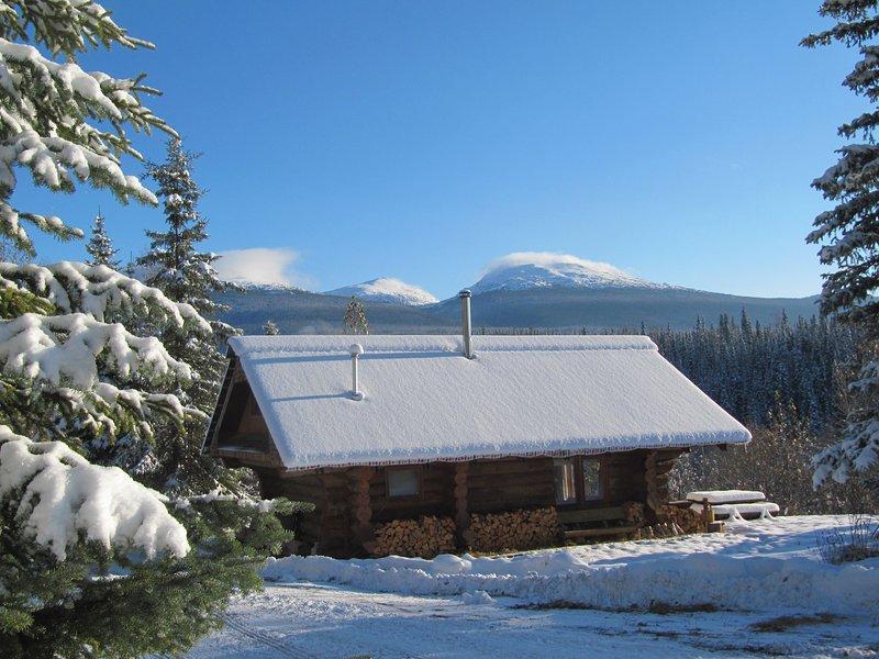 Log Guest Cabin, location de vacances à Smithers