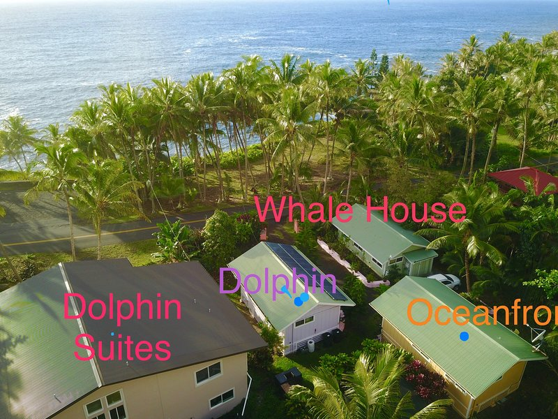 Whale House is one of three oceanfront cottages at Kehena Beach