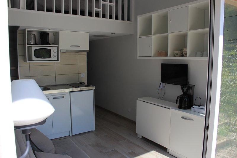 Location studio a proximite du bassin  d,Arcachon, location de vacances à Biganos