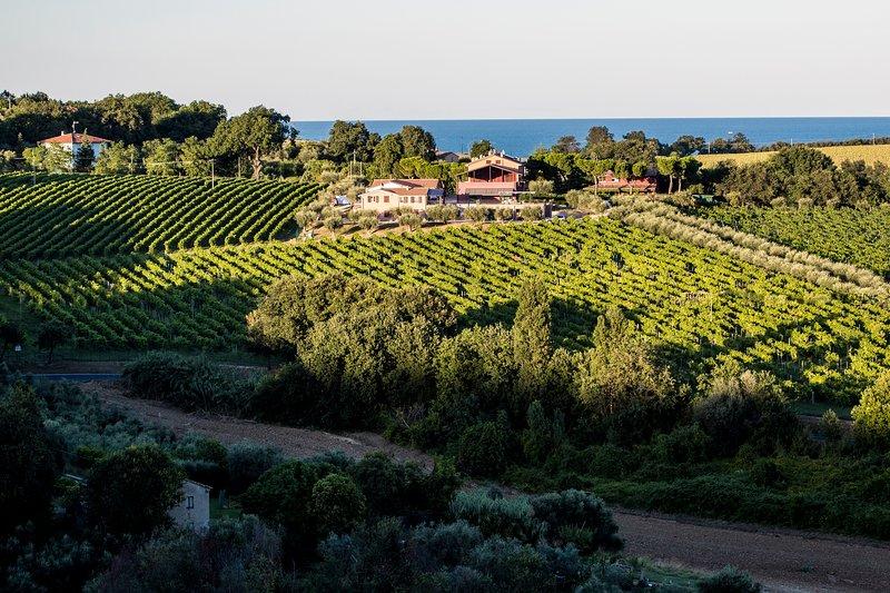 El pueblo, situado en las colinas de la costa del Adriático, también ofrece una bonita vista del mar.