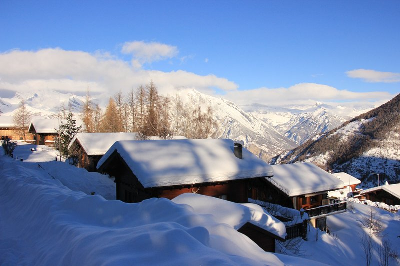 Le Petit Chalet, holiday rental in Canton of Valais