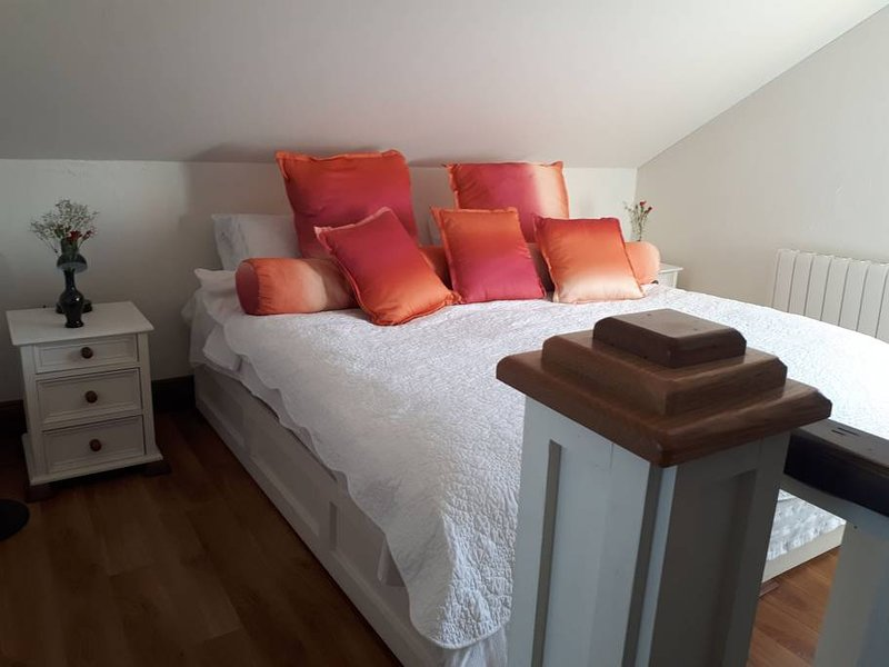 Amazing apartment with balcony, vacation rental in Spiddal
