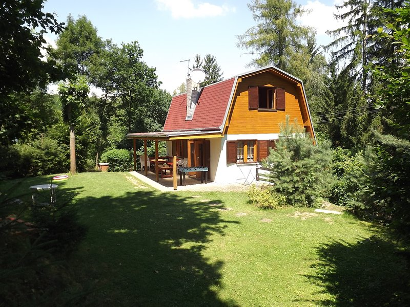Big house with terrace & Wifi, location de vacances à Moravie du Sud