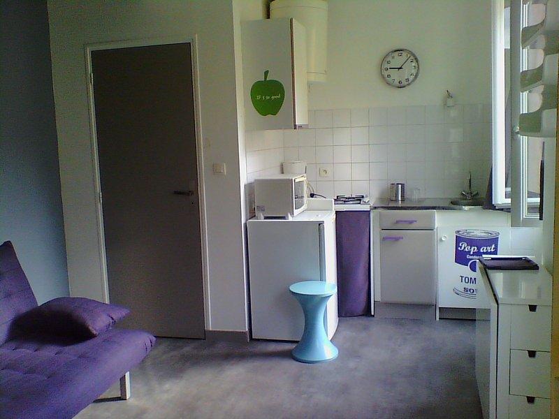 Studio coline de st just / fourvière, vacation rental in Ecully